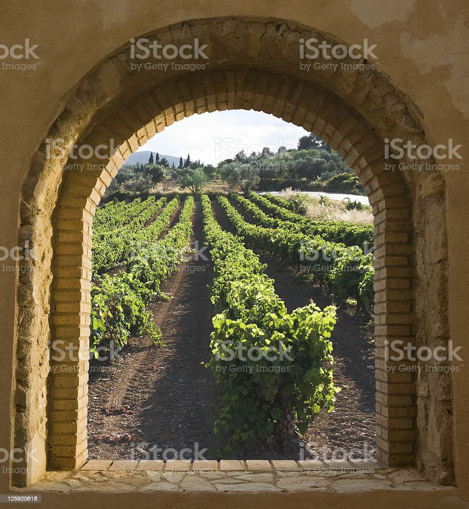 Arched Window On The Vineyard stock photo