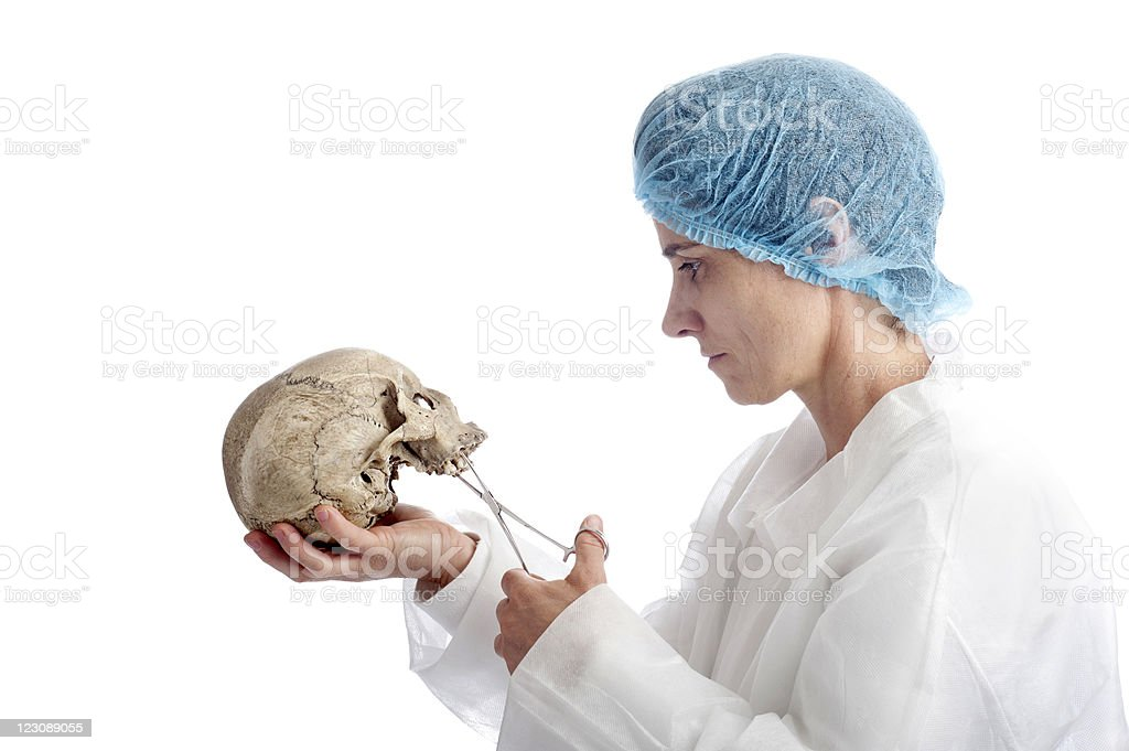 archeology mature woman with skull royalty-free stock photo
