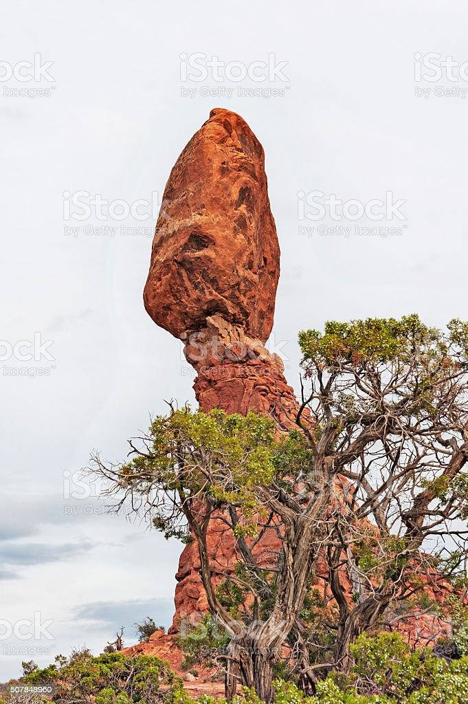 Arches National Park Balancing Rock with Tree stock photo