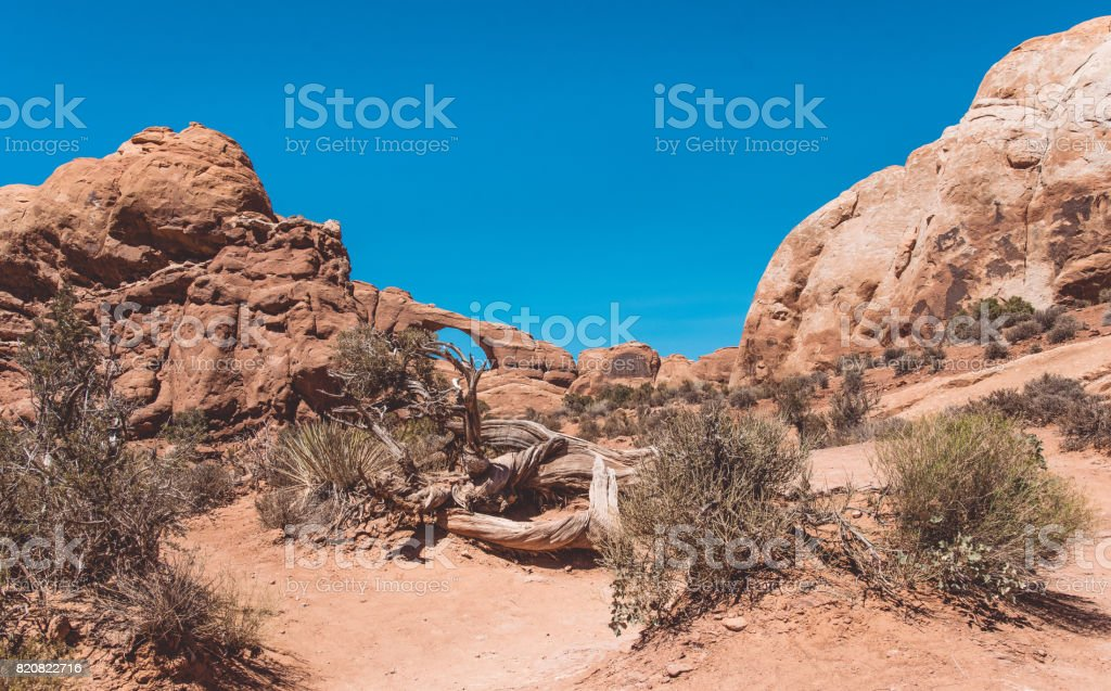 Arches National Park, Moab Desert. Natural arches and rocks stock photo