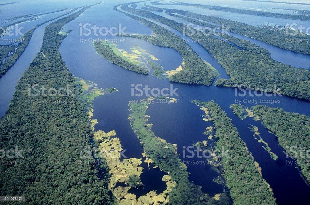 Archipelago of islands in the Rio Negro, Amazon Region, Brazil stock photo
