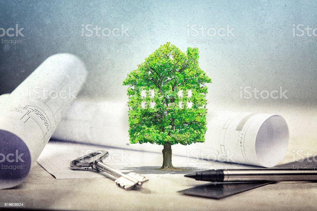 Architect blueprints and house stock photo