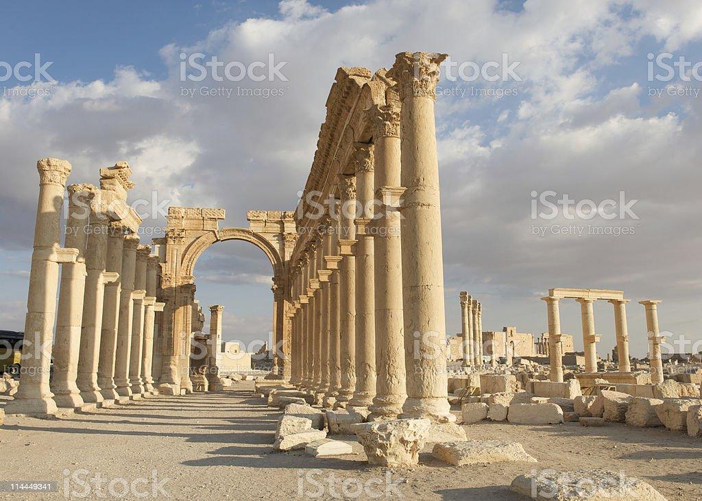 architectural columns of palmyra stock photo