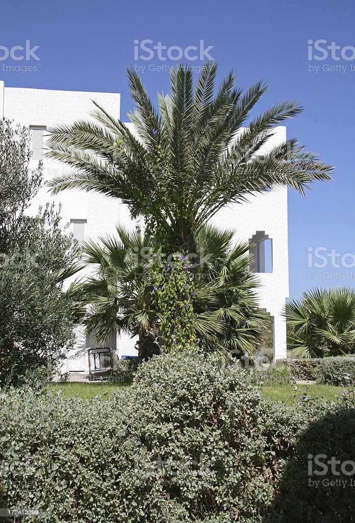 Architecture in djerba royalty-free stock photo