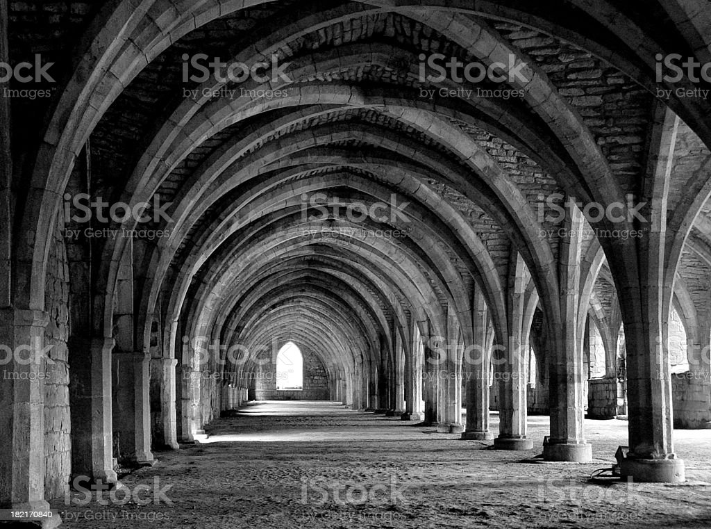 Architecture - Vaults royalty-free stock photo