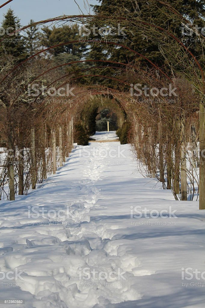 Archway to Winter stock photo