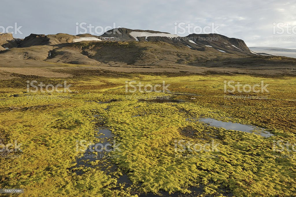 Arctic landscape in Iceland. royalty-free stock photo