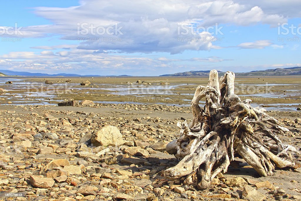 Arctic landscape royalty-free stock photo