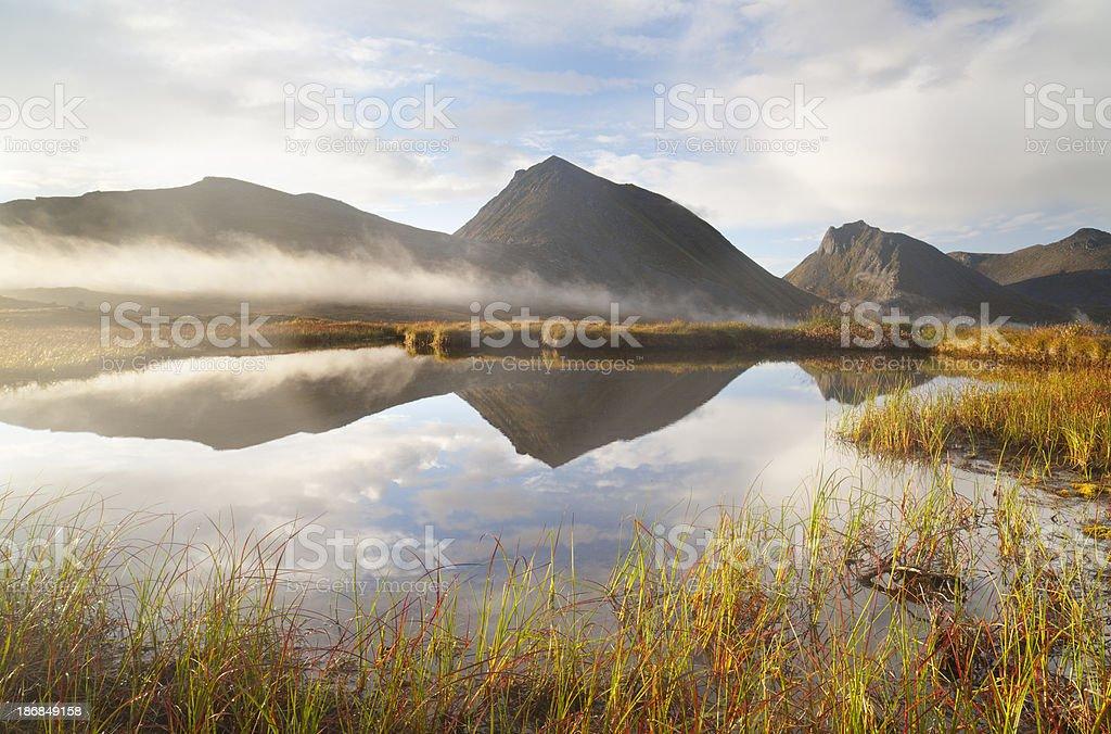 Arctic Pond royalty-free stock photo