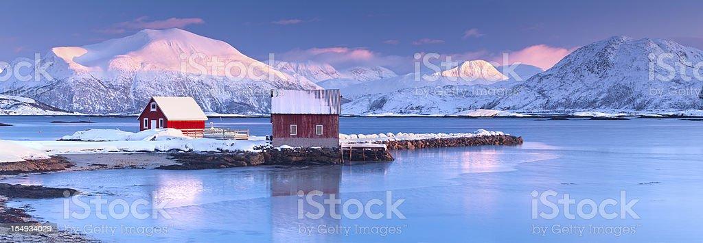 Arctic Rorbeur stock photo