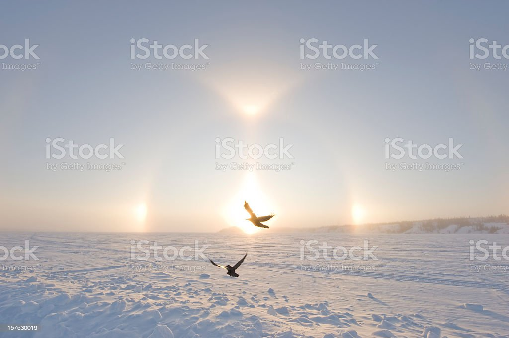 Arctic Sundogs or Parhelion, Northwest territories, Canada royalty-free stock photo