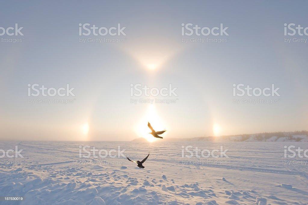 Arctic Sundogs or Parhelion, Northwest territories, Canada stock photo