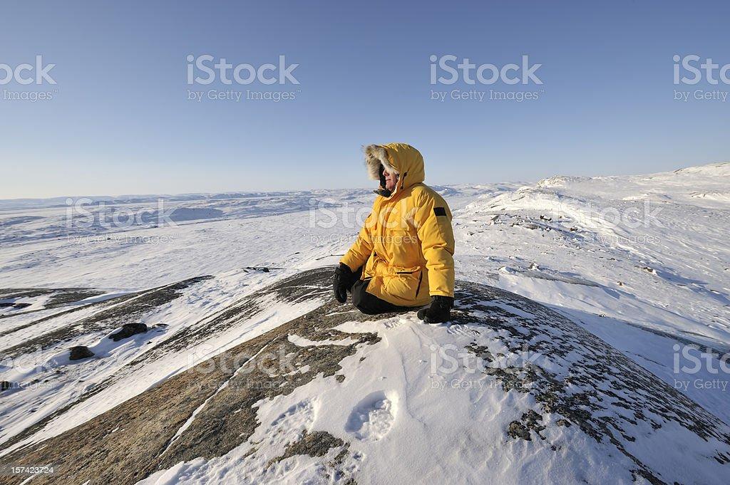 Arctic Tundra, Baffin Island. stock photo
