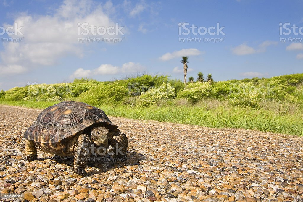 Are we there yet. stock photo