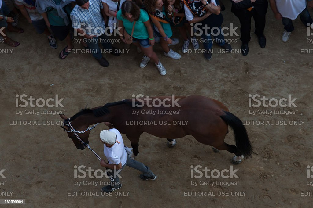 Areal view of the Barbaresco and the horse stock photo