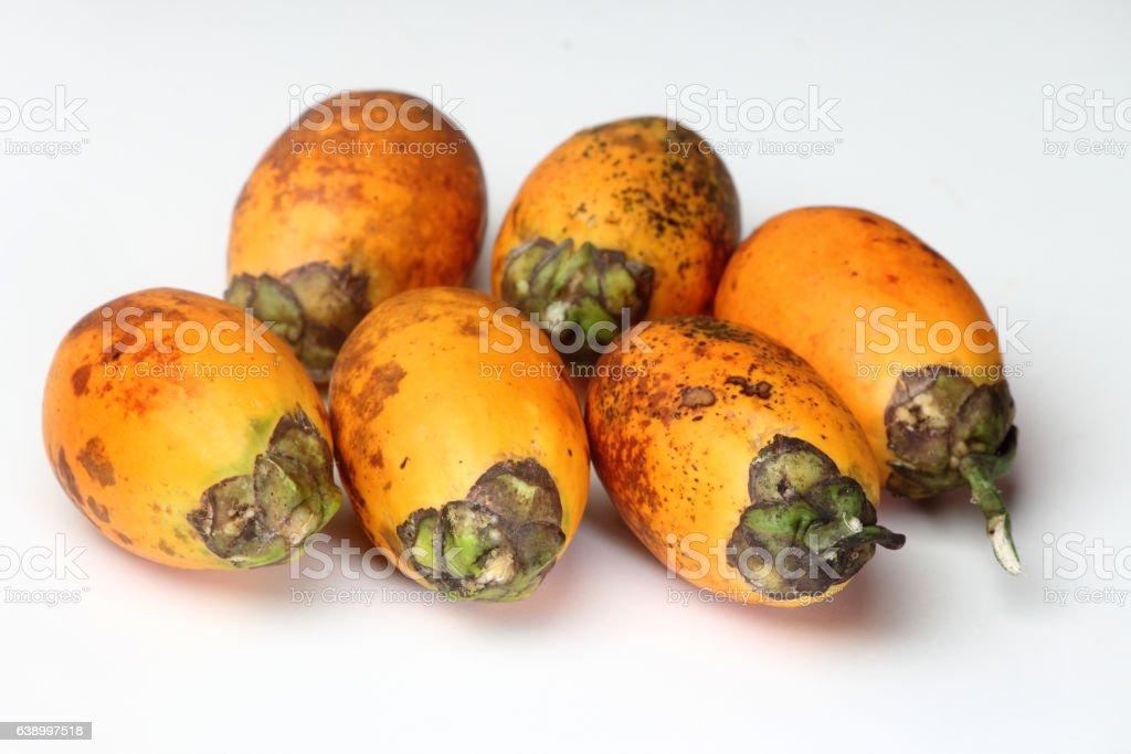 Areca nuts stock photo