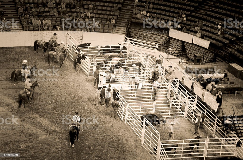 Arena Cowboys and Rodeo (Roughened) royalty-free stock photo