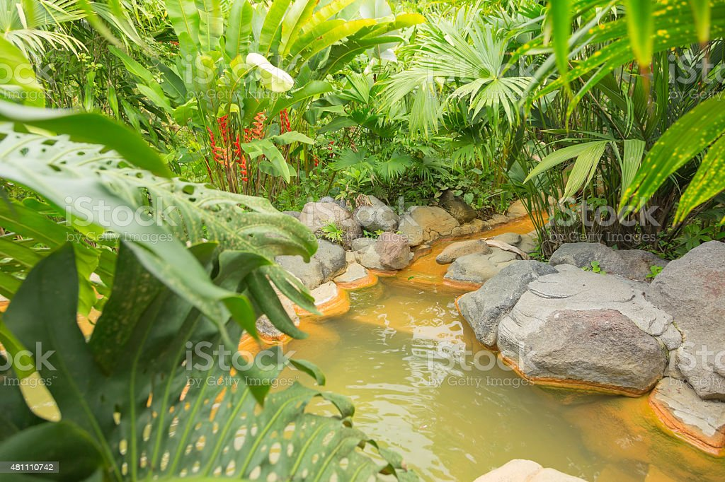 Arenal hot spring, Costa Rica stock photo