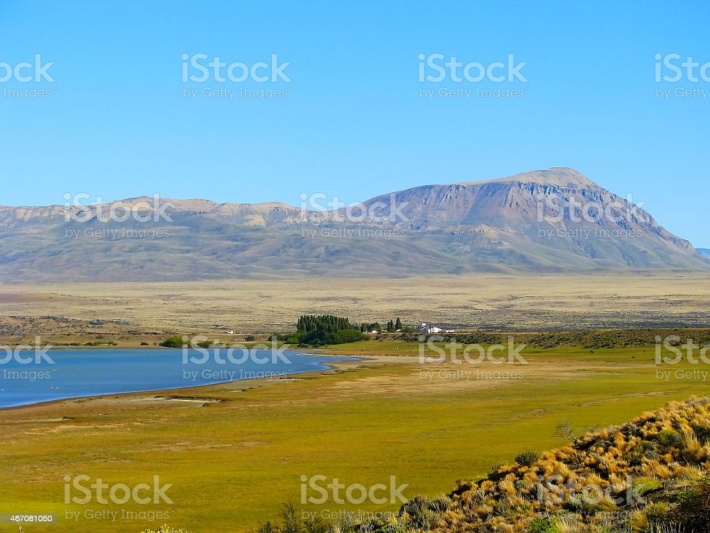 Argentine Farm. stock photo