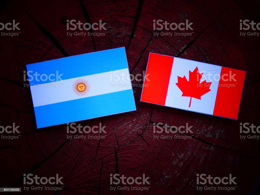 Argentinian flag with Canadian flag on a tree stump isolated stock photo