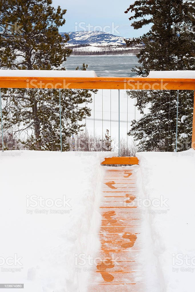 Argh, Winter is here! royalty-free stock photo