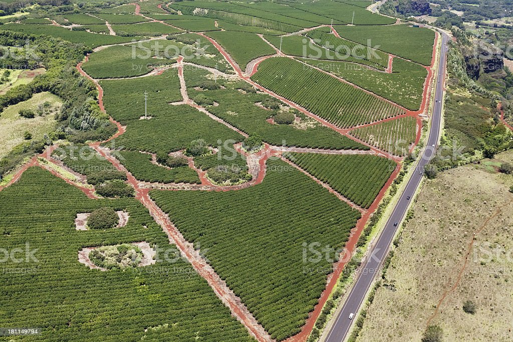 Arial view of farmland royalty-free stock photo