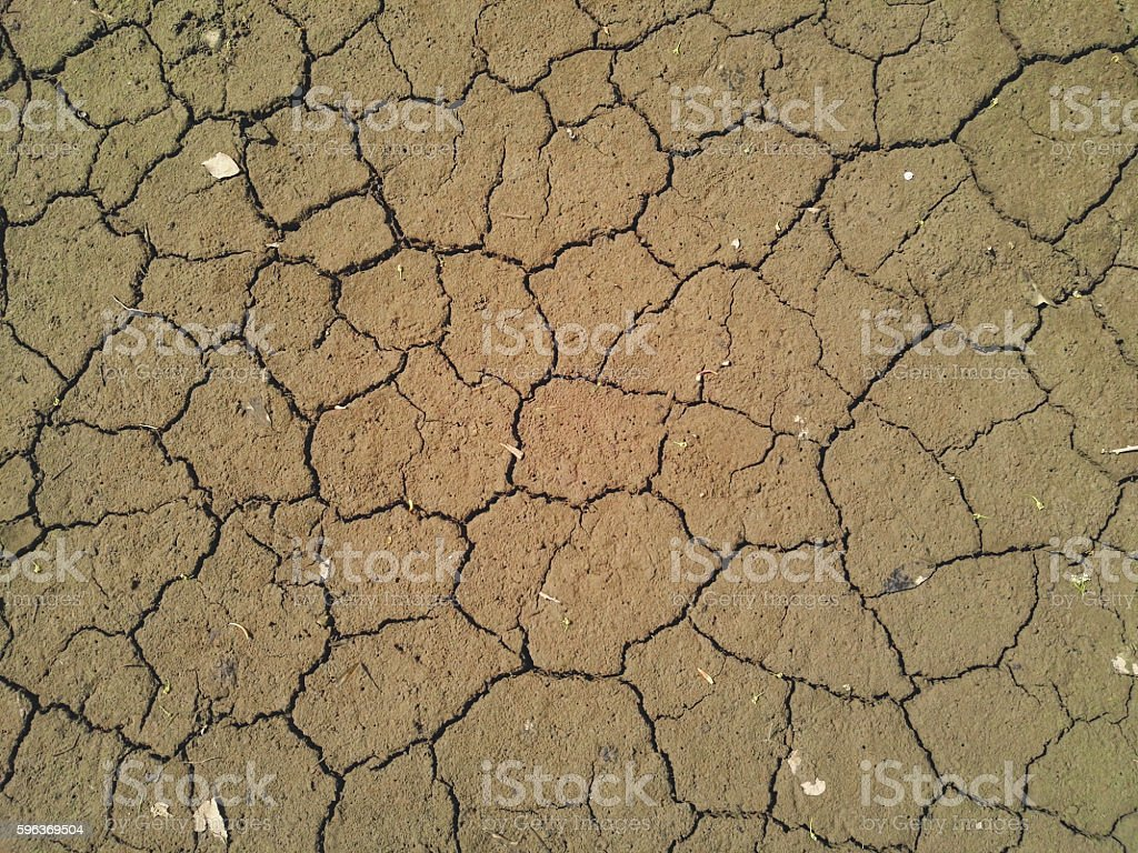 Arid dry soil in the riverbed stock photo