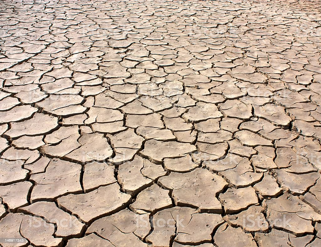 Arid Ground stock photo