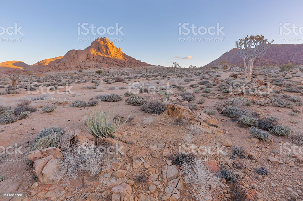 Arid Richtersveld landscape stock photo