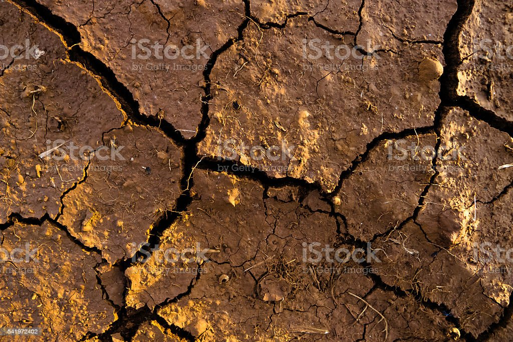 Arid soil with splits. stock photo
