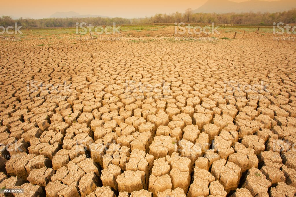 aridity of global warming. stock photo