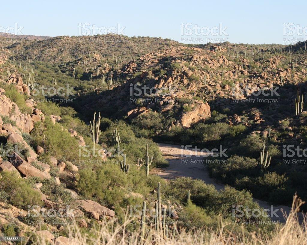 Arizona barren desert mountains dry creekbed, boulders, sahuaro cactus stock photo