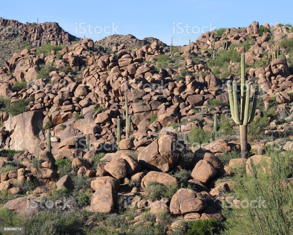 Arizona boulders covering mountain with sahuaro cactus stock photo