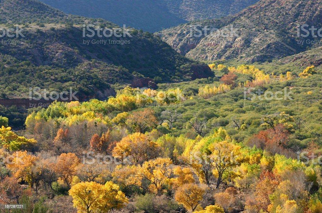 Arizona Canyon in Autumn stock photo