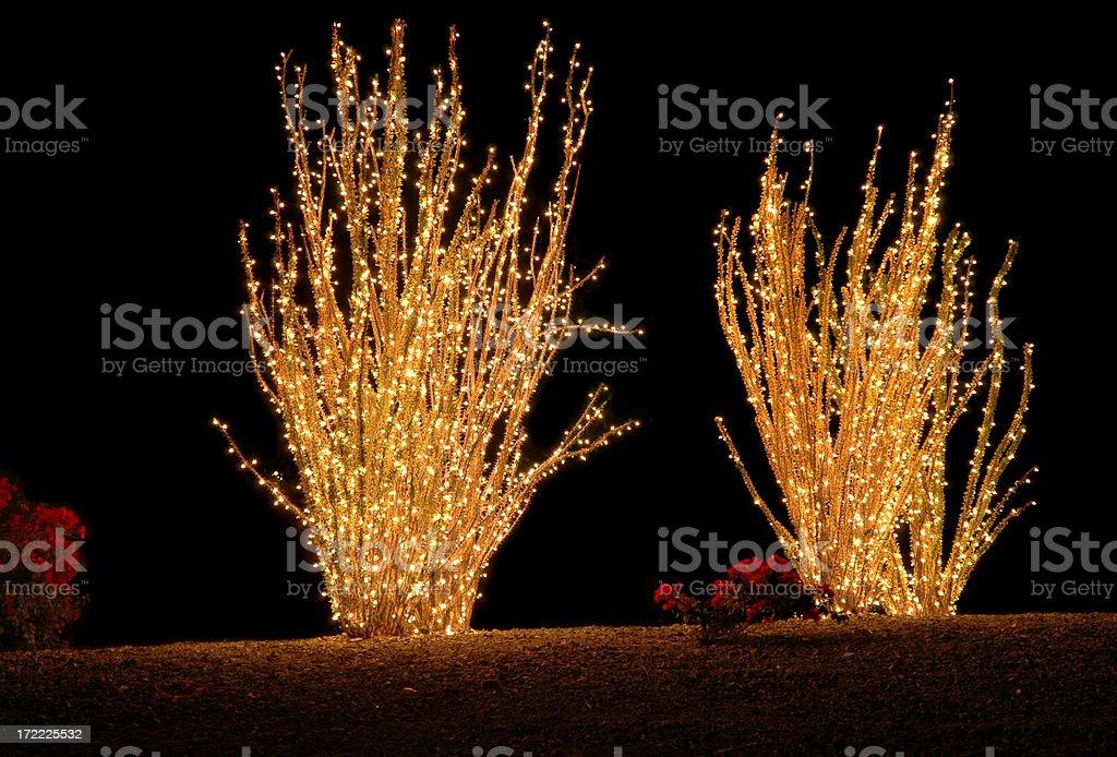 Arizona Christmas stock photo