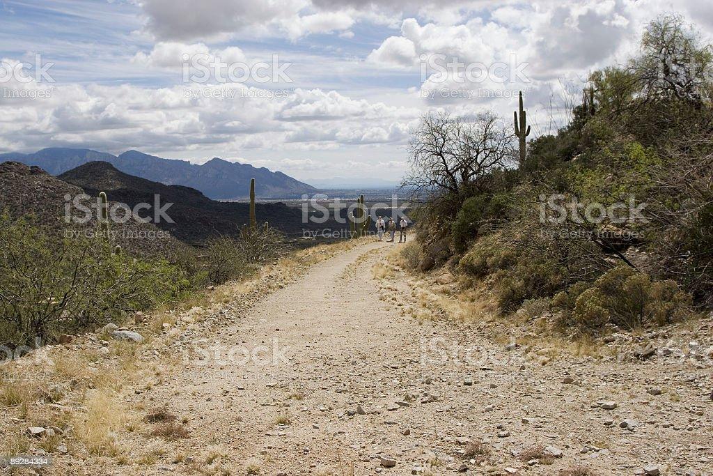 Arizona Desert Walk royalty-free stock photo