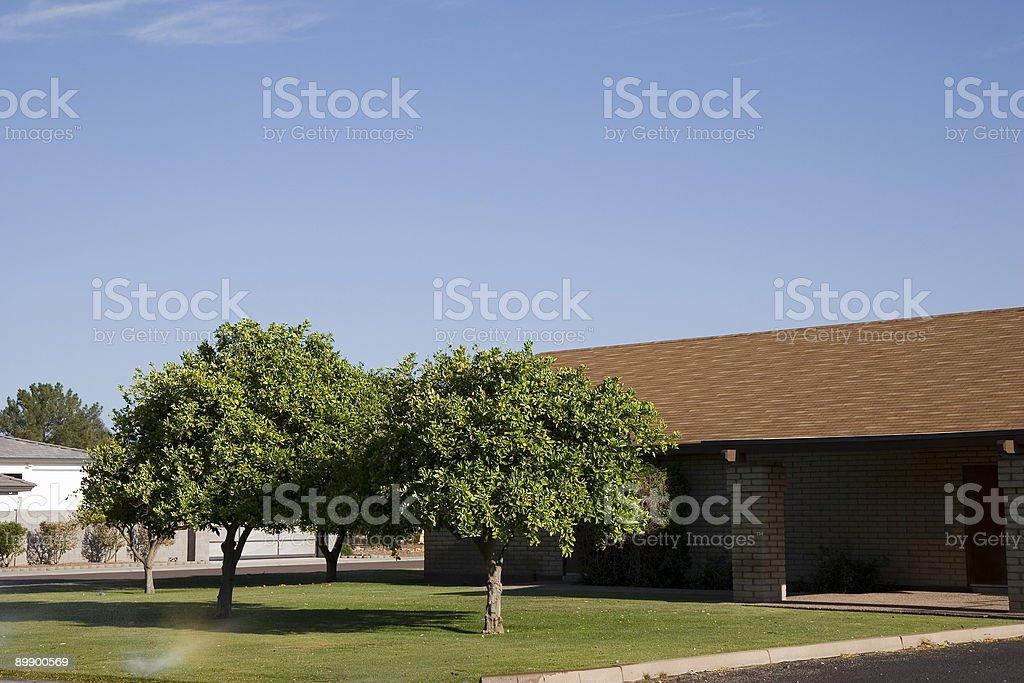 Arizona Front Yard royalty-free stock photo