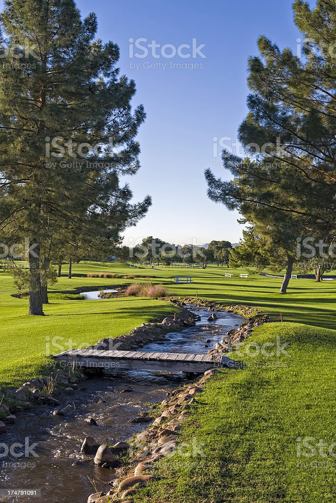 Arizona Golf Course royalty-free stock photo