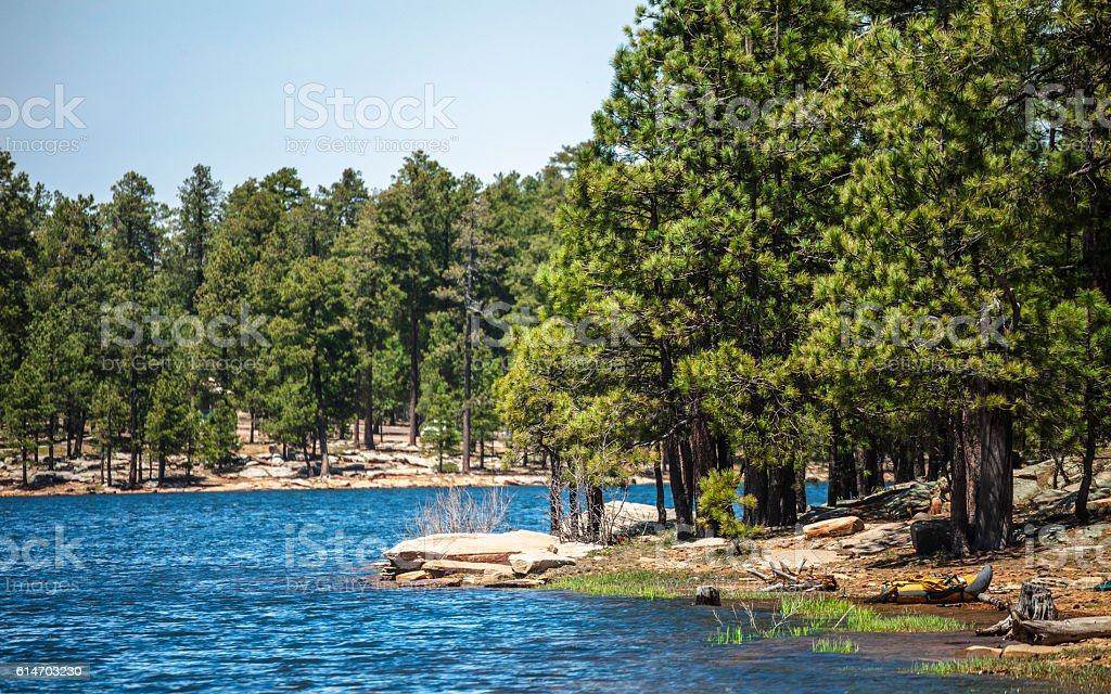 Arizona lakeside forest landscape, Willow Springs Lake. stock photo