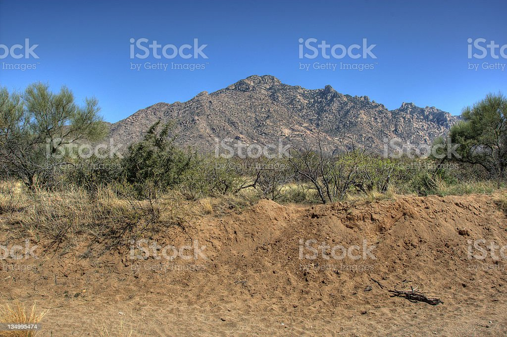 Arizona mountainside view stock photo