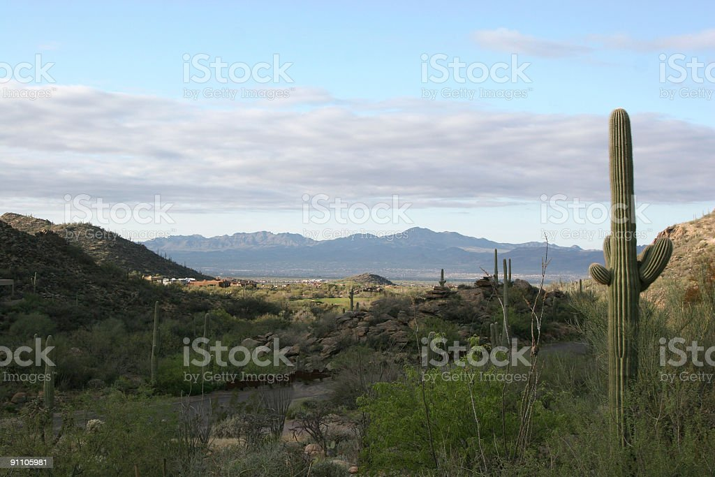 Arizona sunrise near Marana Dove Mountain royalty-free stock photo