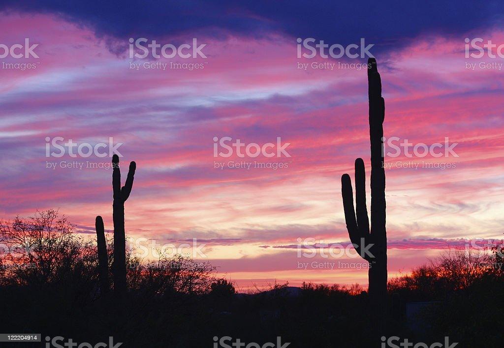 Arizona Sunset stock photo