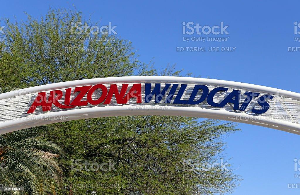 Arizona Wildcats stock photo