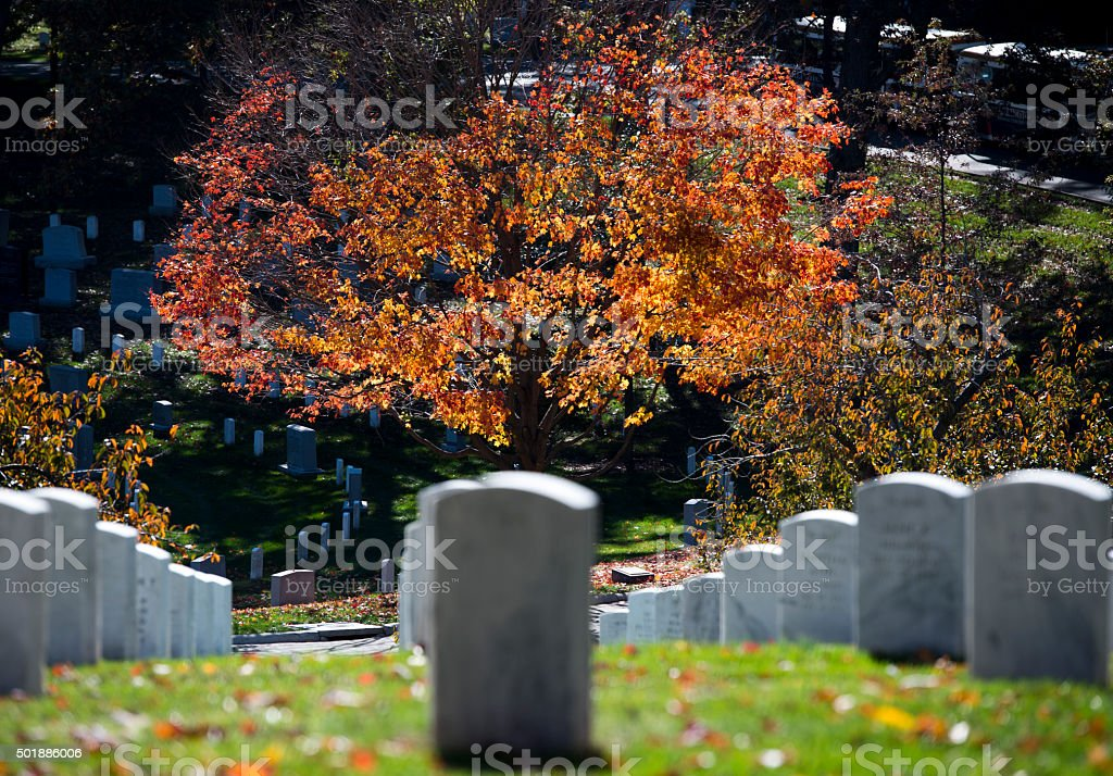 Arlington Cemetery Fall stock photo