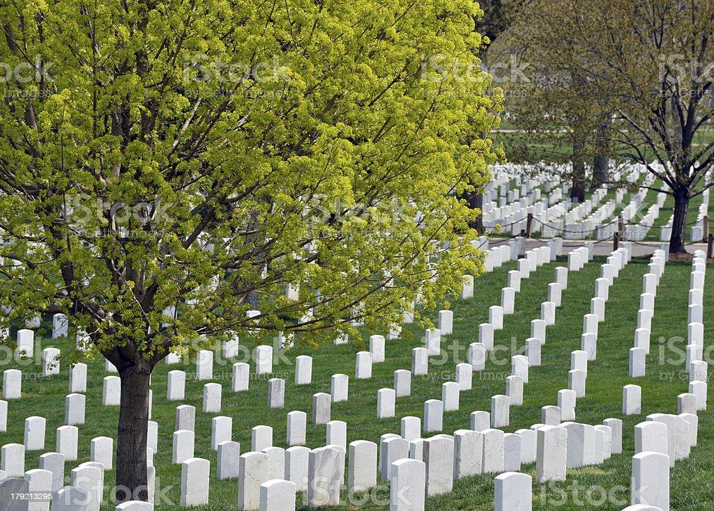 Arlington National Cemetary stock photo