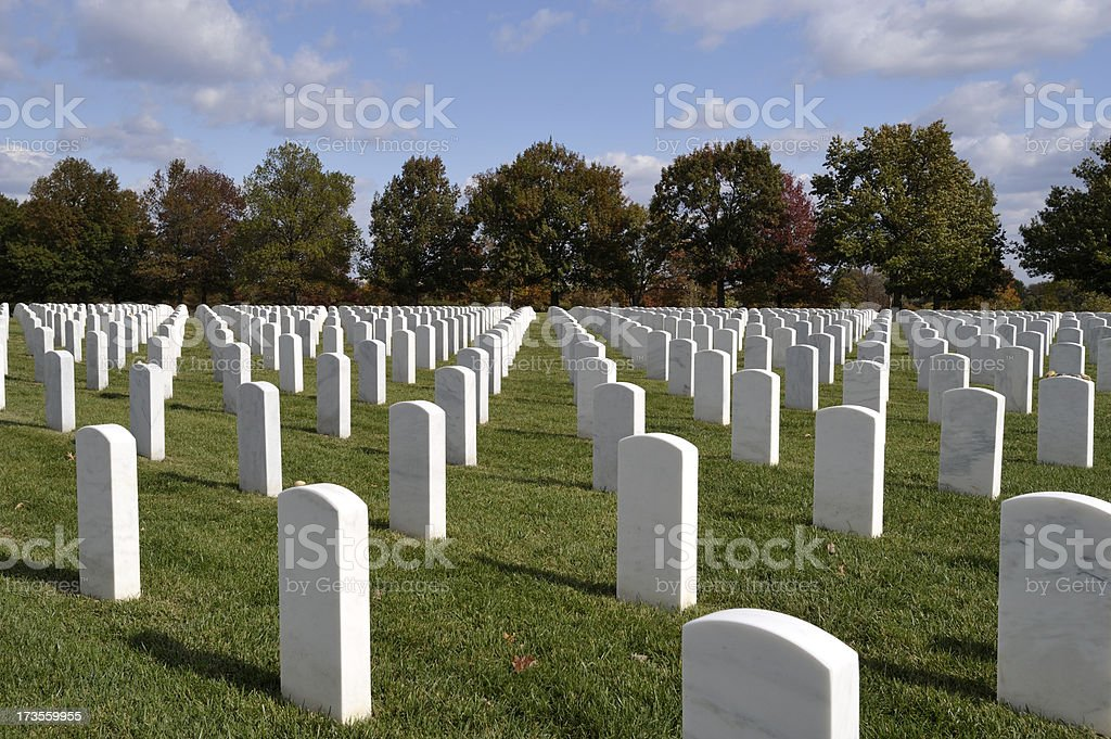Arlington National Cemetery Headstones royalty-free stock photo