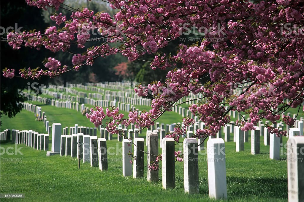 Arlington National Cemetery in Bloom royalty-free stock photo