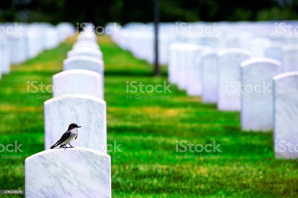 Arlington National Cemetery VA near Washington DC stock photo