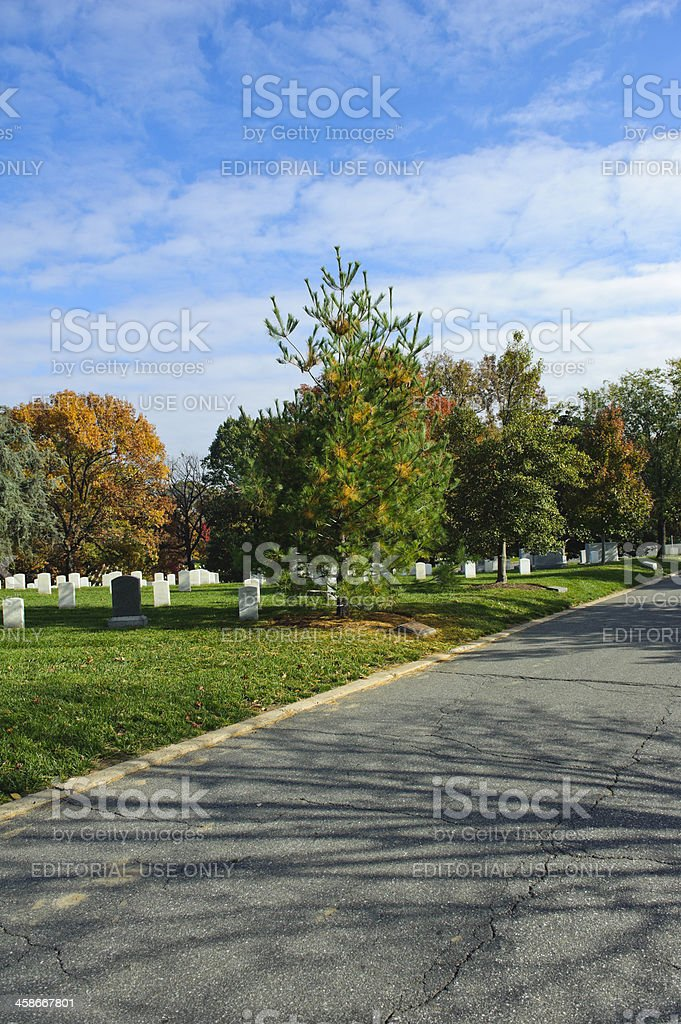 Arlington National Cemetery with colorful trees royalty-free stock photo