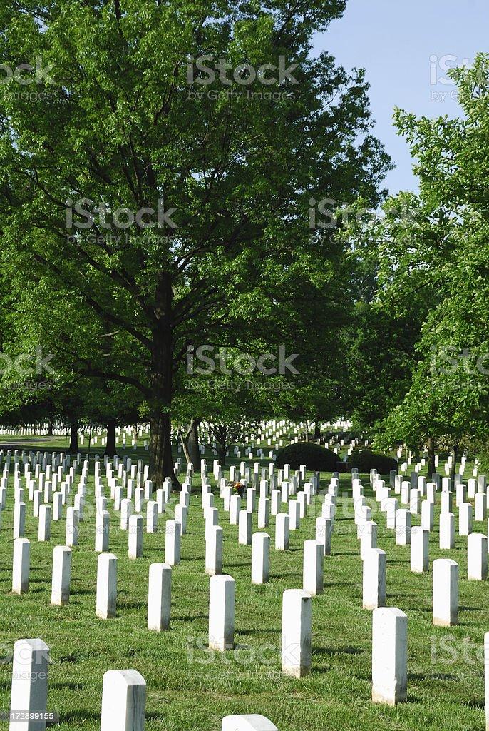 Arlington royalty-free stock photo